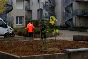 espaces verts participatifs
